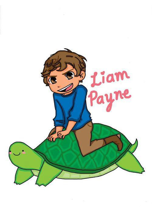 Liam James Payne