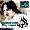 Album Bahaa Sultaan / Tebaa'a Enta Elly Leyaa (2011)