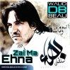 Album Bahaa Sultaan  / Zai Ma Ehna (2011)