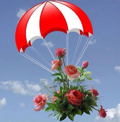 bonjour mes amis(es) , je vous souhaite une merveilleuse journée