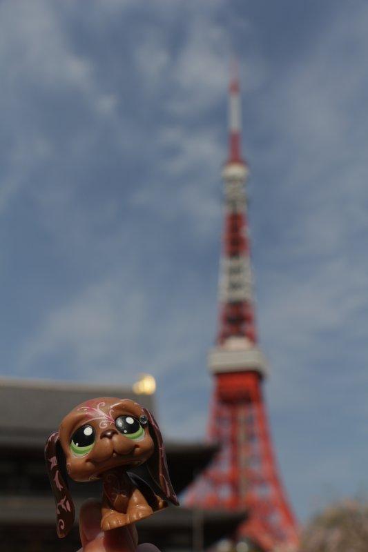 Séance Photo #30 - JAPON ! [Partie #4]