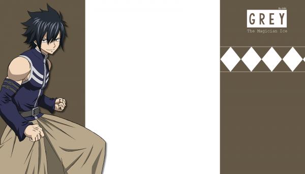 Habillage 14 - Fairy Tail Grey