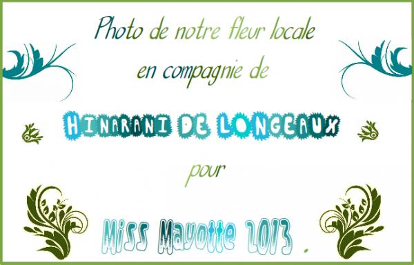 ~ Vanille à Mayotte ~