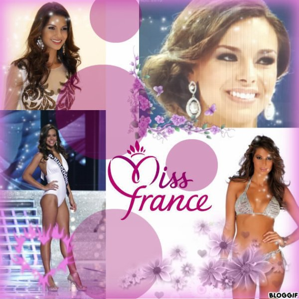 ~ Miss France, bien plus qu'une institution ~