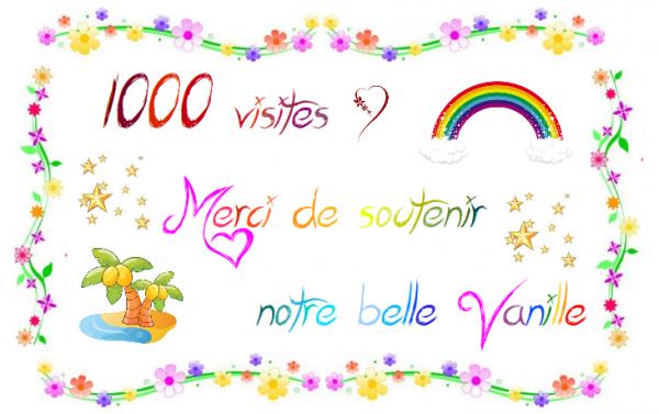 ~ 1000 visites ~
