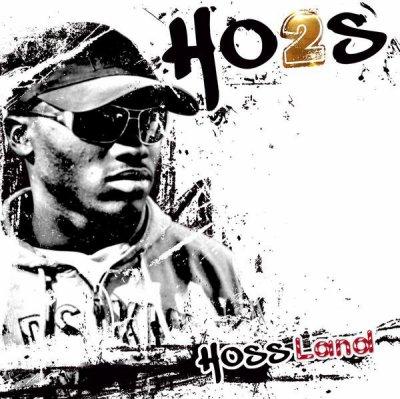 2010: HO2S - HOSSLAND