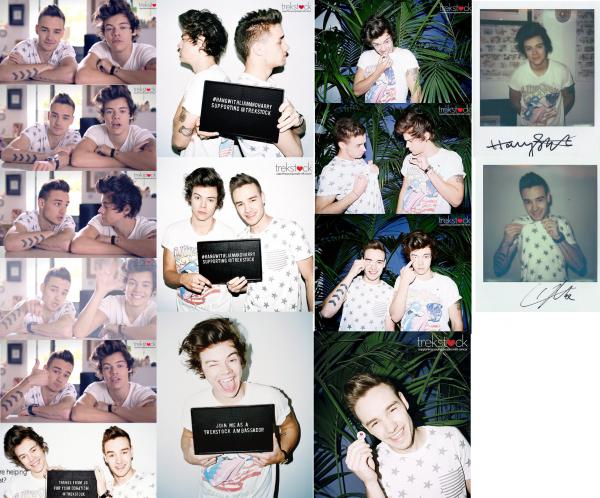 Liam et Harry pour Trekstock
