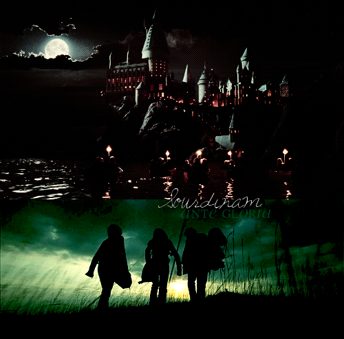 « We're in this. Together, Harry. »