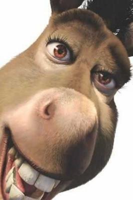 Les Persos L âne Shrek Le Blog