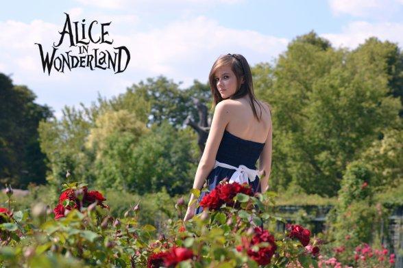 Alice au pays des merveilles (partie II).