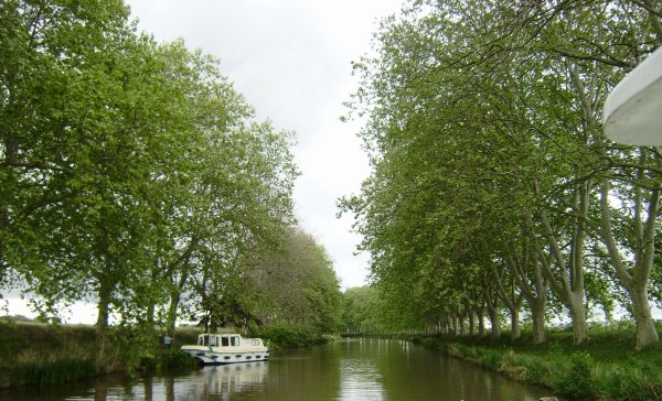 L'ODYSSEE DU CANAL.
