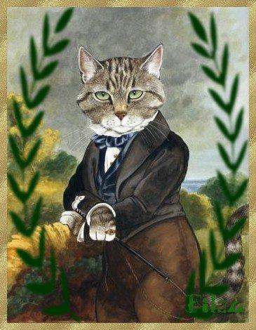 La Communication visuelle chez le Chat....merci à Filou pour ces jolis portaits de chats