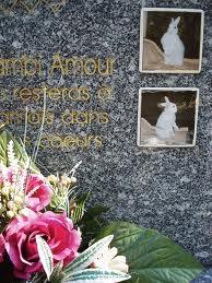 Les Locataires du cimetière...........