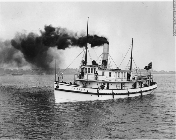 Le Maine Coon , histoires et légendes(suite)