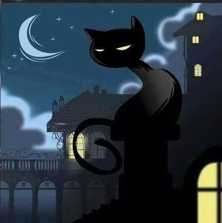 Ha! Les Chats???