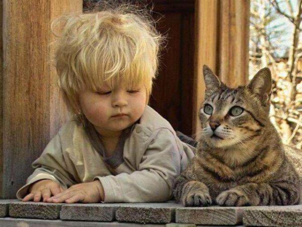 Le Chat est Essentiel dans la Vie d'un Enfant....preuves tout en photos!