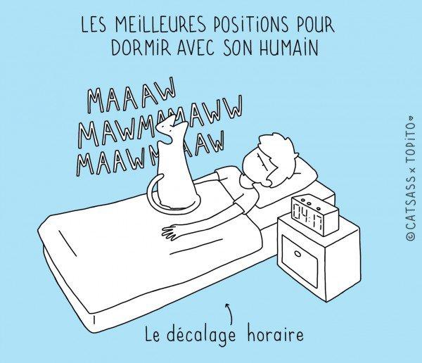 Top 10 des positions pour dormir avec son chat (en illustrations), la dure vie des propriétaires de félins
