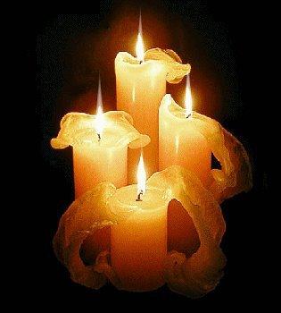 Hommage à toutes les victimes innocentes tombées sous les balles de terroristes sans foi ni loi