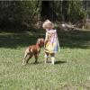 Chiens > Conseils d'expert > L'enfant et le chien : 15 conseils pour les faire cohabiter en toute sécurité Race de chien : L'enfant et le chien : 15 conseils pour les faire cohabiter en toute sécurité