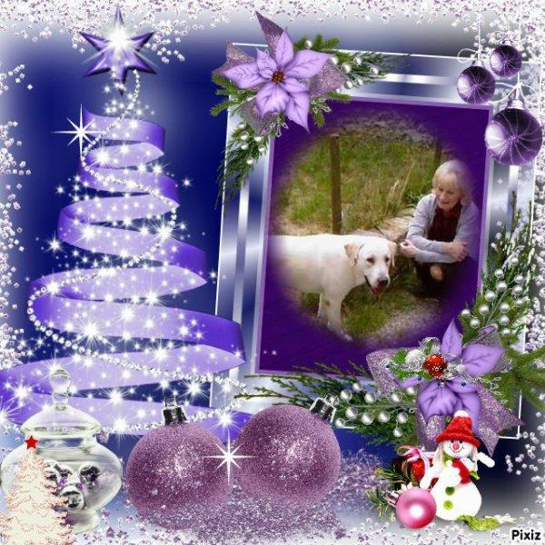 """Dimanche 13 décembre 2015; l'heureuse élue est """" Princesse 6344"""""""