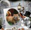 """lundi 21 décembre 2015: l'heureuse élue est """"Sophieand friends"""""""