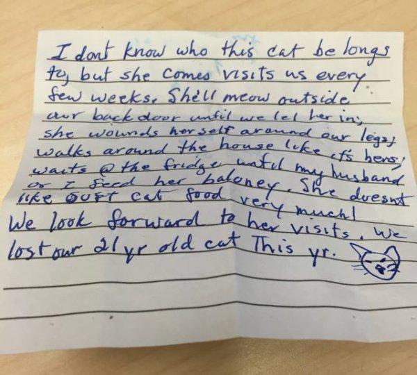 Une chatte est allée visiter les voisins et elle est rentée avec cette lettre attachée!