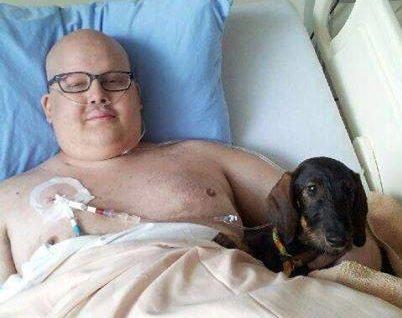 Cet hôpital permet à votre chien de vous visiter, parce que les câlins sont le meilleur médicament