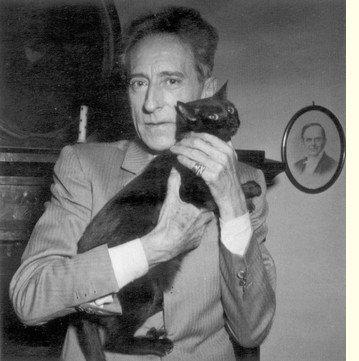 Célébrités et chats noirs