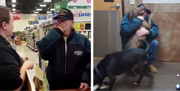 Malade et contraint d'abandonner ses chiens, il ne s'attendait pas à une telle surprise de la part du refuge