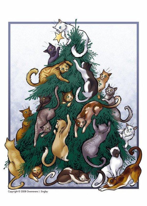 Deux décembre vous fera découvrir de merveilleuses créations! Je crois que je vais faire un sapin comme en bas car Marilou va le découvrir et je pense qu'elle va s'éclater !