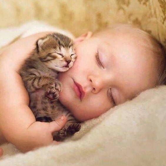 Bonne Nuit les ami(e)s!!!!!