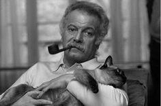 Brassens, un grand artiste et un grand ami des chats