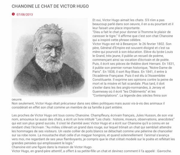 Le Chat et l'écrivain: La vie est un mystère qu'il faut vivre, et non un problème à résoudre ! de Victor Hugo