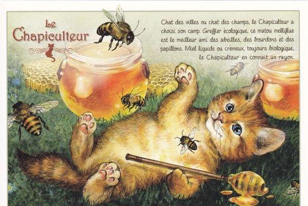 Métiers Felins: donc il faut bien qu'ils récupèrent nos Minous.....