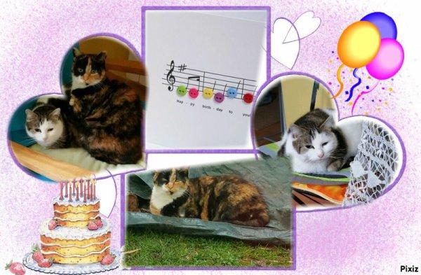 """Cadeau pour mon amie Patou, c'est son anniversaire, son blog """"Kirou25"""""""