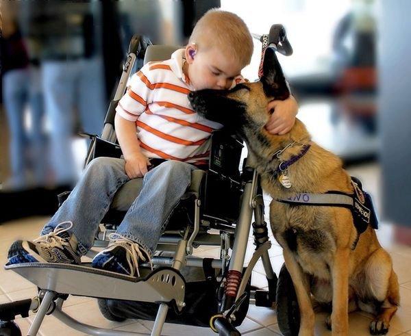 Enfants et animaux, beaucoup d'Amour.