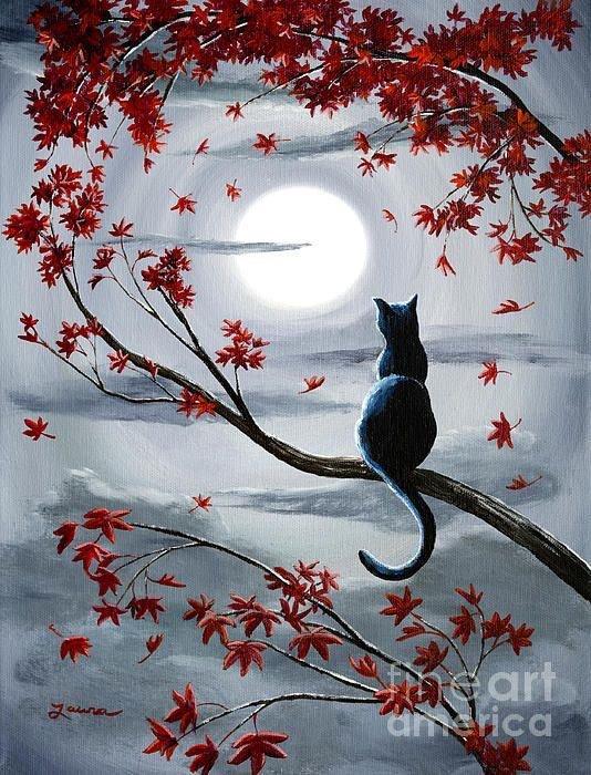 Bonne Nuit à Tous......