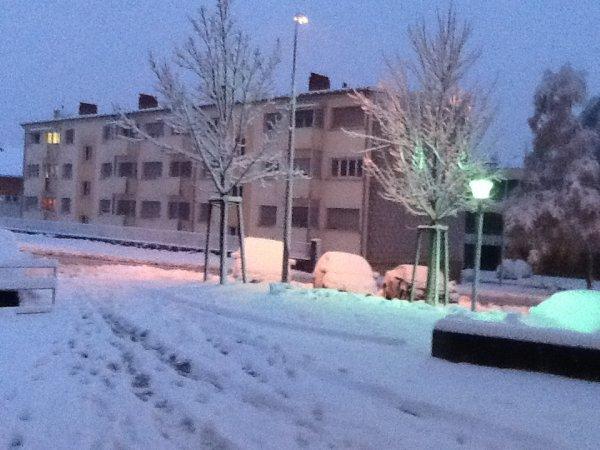 Ici, c'est temps à la neige...en douze heures il est tombé, environ, quinze cms.....