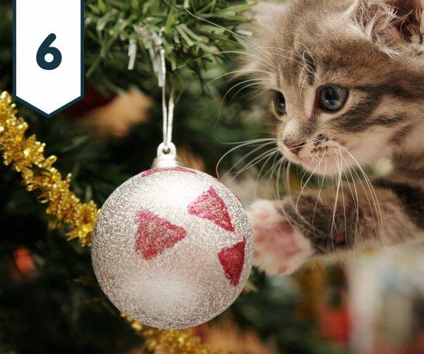 Six décembre 2017... Calendrier de l'avent et cadeaux pour tous.