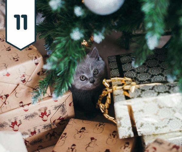 Onze décembre 2017....calendrier de l'avent.....cadeaux
