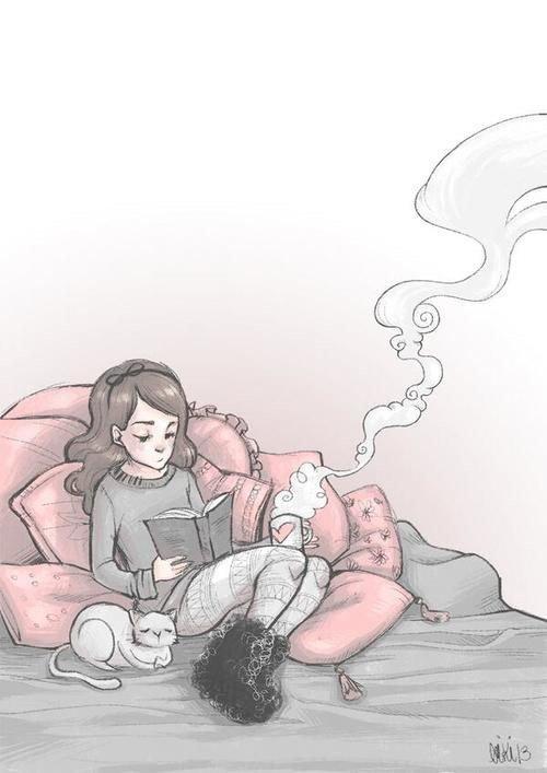 Un Chat, un Livre : que du Bonheur!