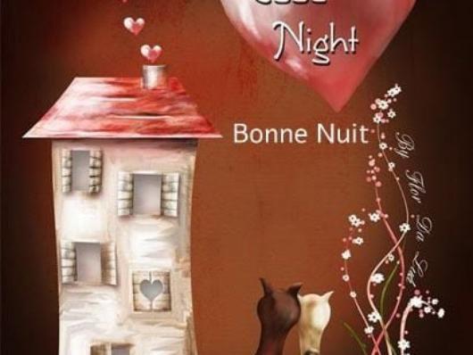 C'est avec cette belle image que je vous souhaite une Bonne Nuit et merci à Amitiétendresse par la même occasion