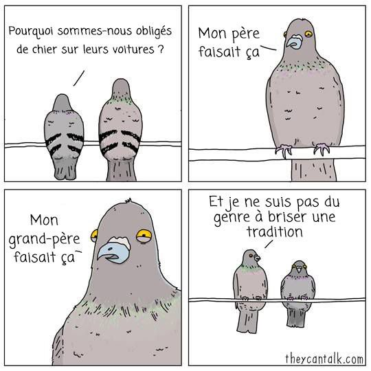 Moment humour....
