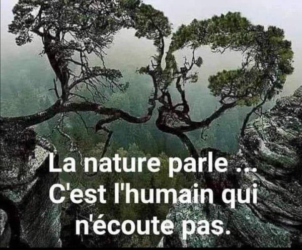 Il ne faut pas se résigner en se disant le mal est fait....non il faut arrêter de mettre du béton partout....stop ! Replantons des arbres 🌲 🌳 ils sont une partie de la solution  et arrêtons les constructions il y en a bien assez....soyons responsables et acteurs de notre Vie et devenons écologistes pour une meilleure planète 🌍