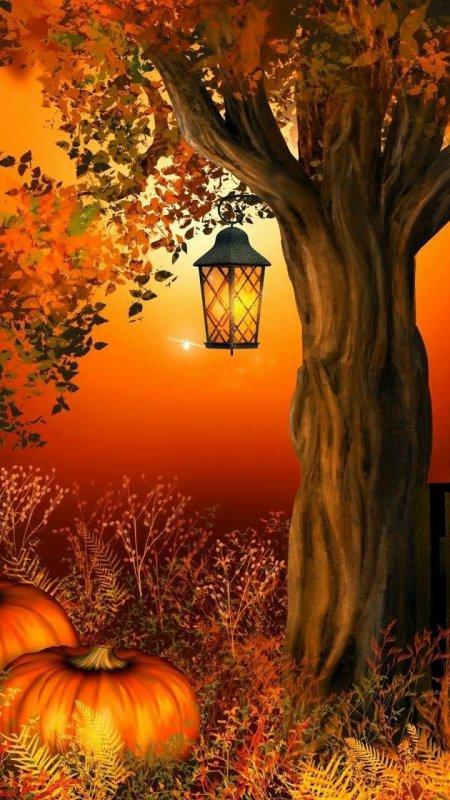 Bonne soirée à tous