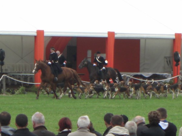 Game Fair de Chambord 2013