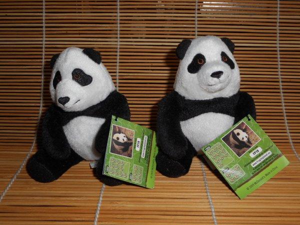 Panda peluche 11