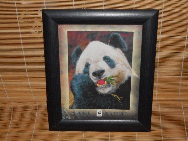 panda cadre 1