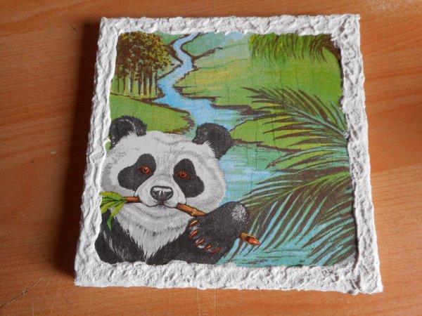 panda cadre 2