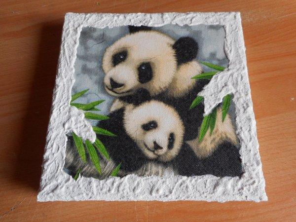 panda cadre 3